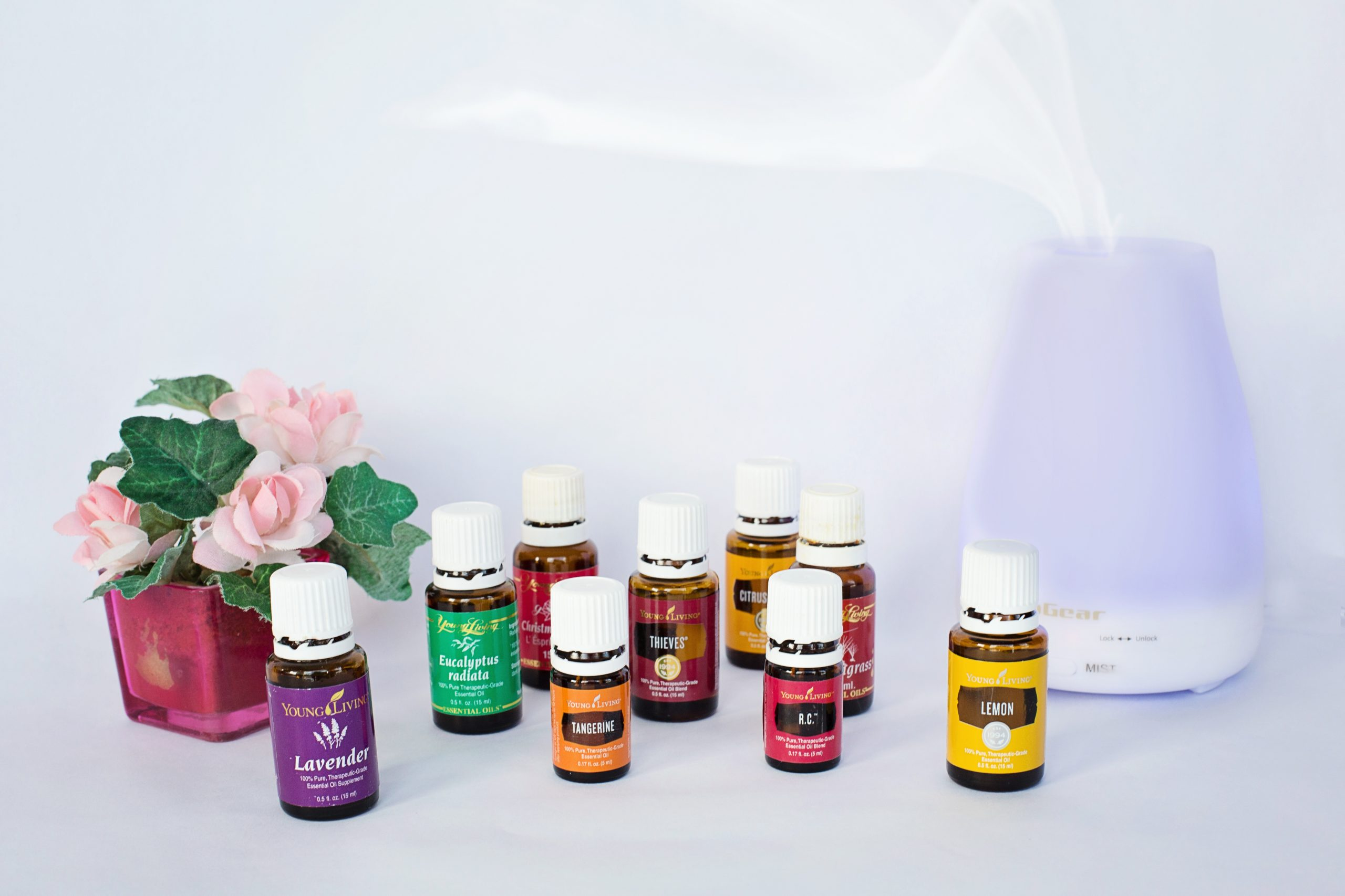 essentiele olie young living distributeur